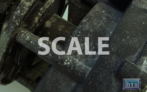 Check Pumps & Components For Traces Of Scale